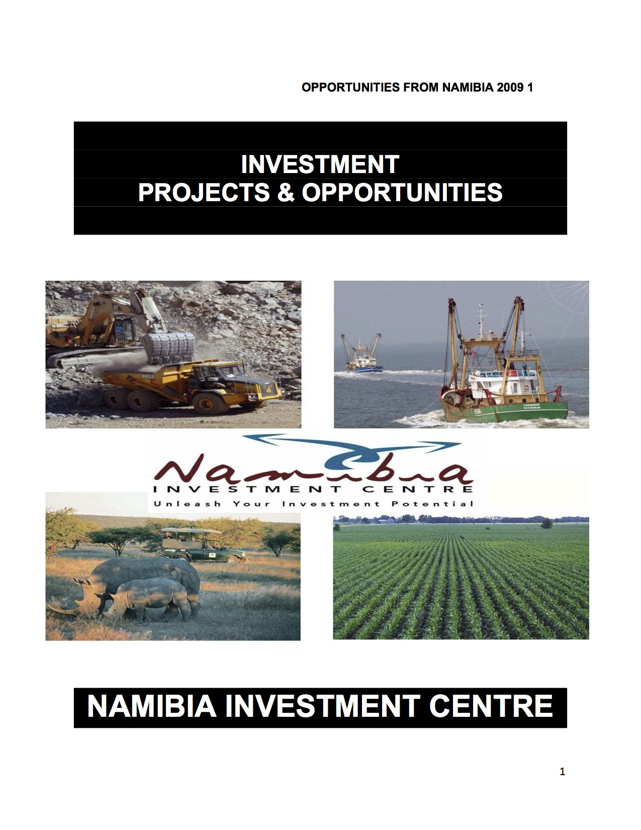 Investment_Projects_and_Opportunities_cover.jpg